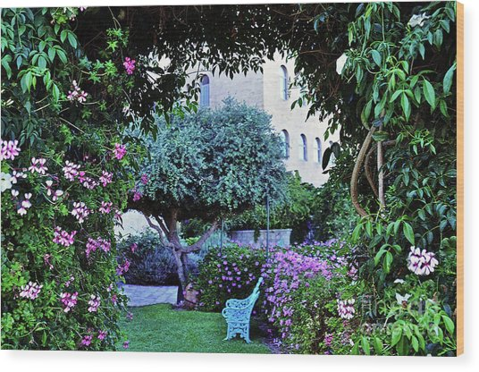 In The Garden At Mount Zion Hotel  Wood Print