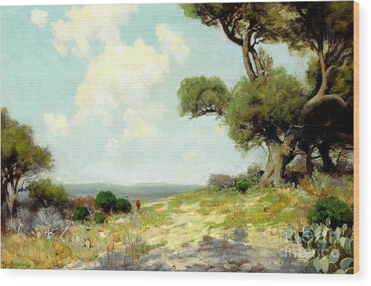In The Hills Of Southwest Texas 1912 Wood Print