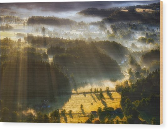 In The Morning Mists Wood Print