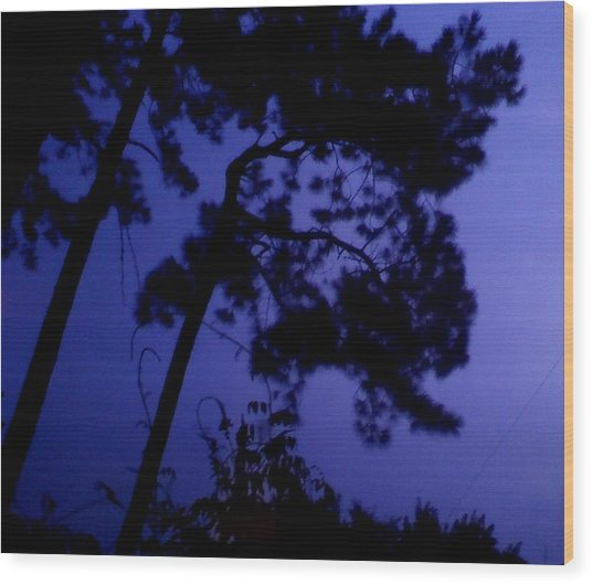In The Pines Wood Print by Leslie Revels