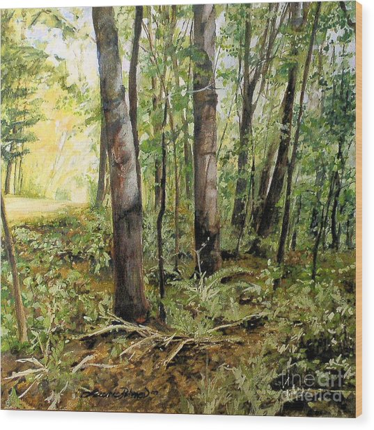 In The Shaded Forest  Wood Print