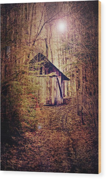 In The Sugar Bush Wood Print