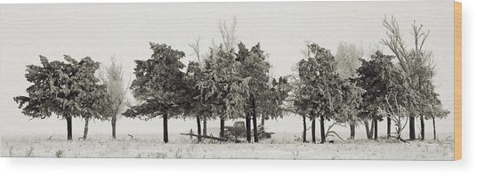 In The Tree Line Wood Print