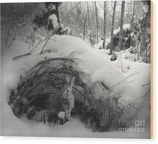 In Wonderland Wood Print