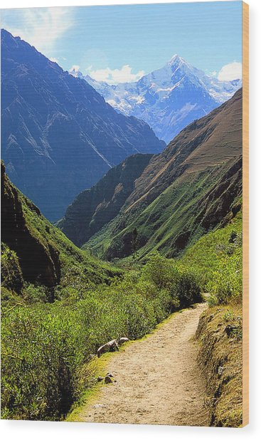 Inca Trail And Mt. Veronica Wood Print by Alan Lenk