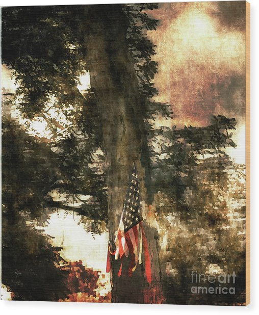 Independence Day Appalachia  Wood Print by Steven Digman