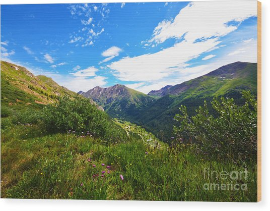 Independence Pass Wood Print