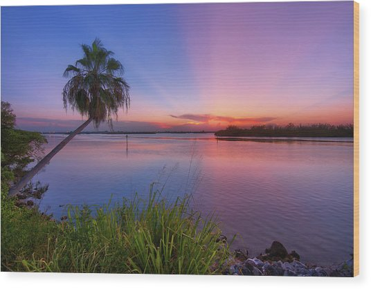 Indian River State Park Bursting Sunset Wood Print