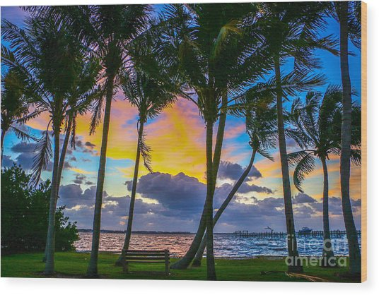 Indian River Sunrise Wood Print