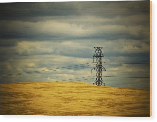 Indiana Dunes National Lakeshore II Wood Print
