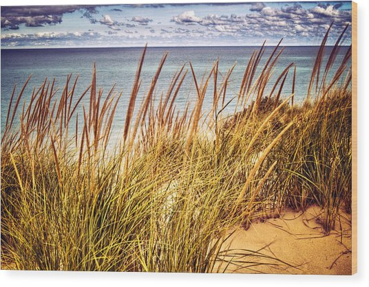 Indiana Dunes National Lakeshore Wood Print