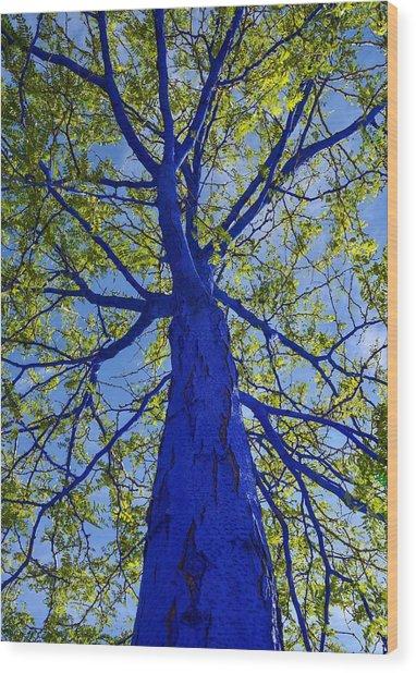 Indigo Tree Wood Print