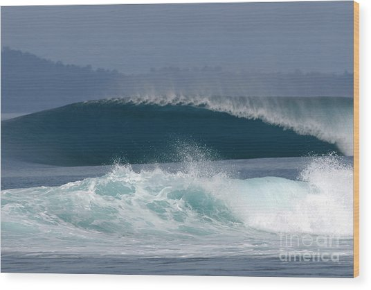 Indo  Wood Print by Addison Fitzgerald