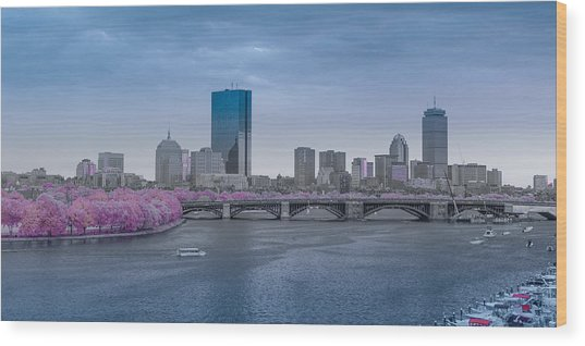 Infrared Boston Wood Print