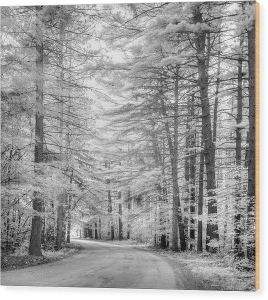 Infrared Entrance Road Wood Print by Gunther Schabestiel
