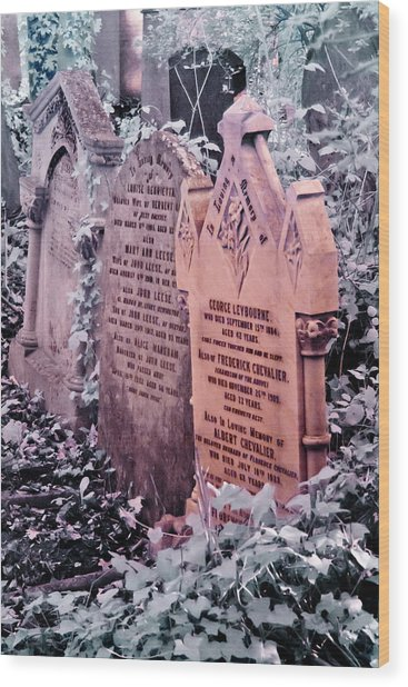 Wood Print featuring the photograph Music Hall Stars At Abney Park Cemetery by Helga Novelli