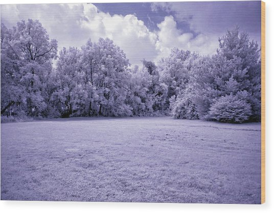 Infrared In Glasgow Ky Wood Print