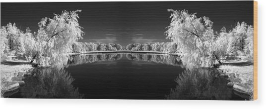 Infrared Reflections Wood Print