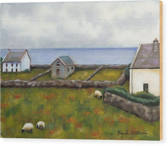 Inishmore Island Wood Print by Brenda Williams