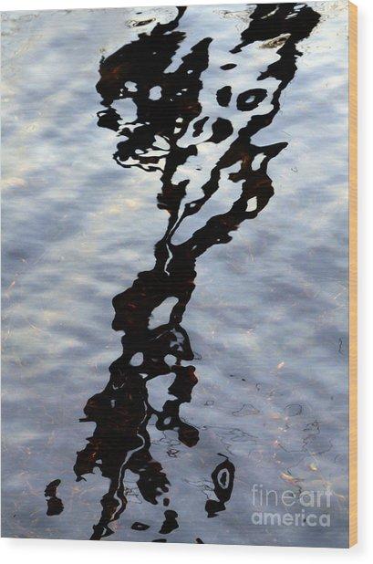 Ink Blot Wood Print by Elizabeth McPhee