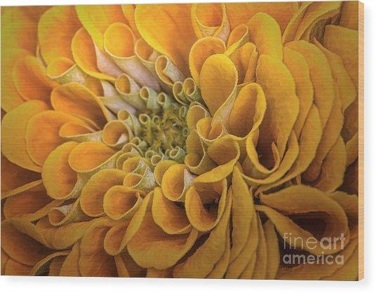 Inner Beauty Wood Print