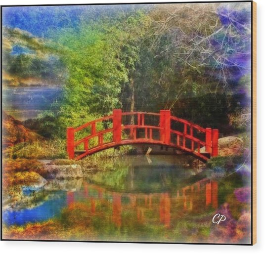 Inner Bridges Wood Print