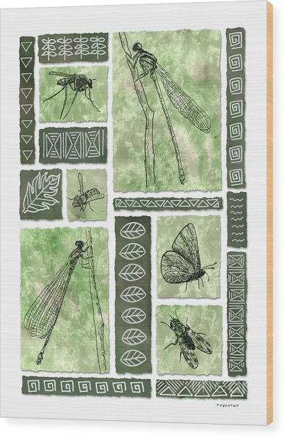 Insects Of Hawaii II Wood Print
