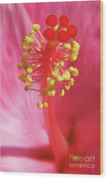 Inside The Hibiscus Wood Print