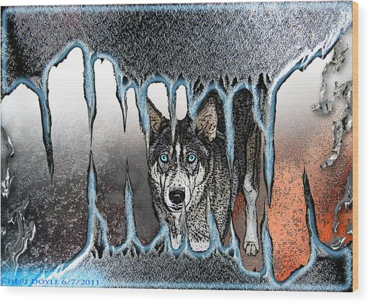 Inside The Monsters Jaws Wood Print