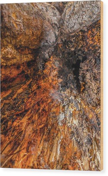 Insides Wood Print