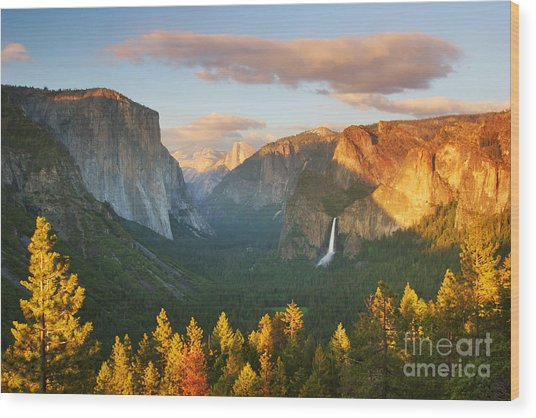 Inspiration Point Yosemite Wood Print by Buck Forester