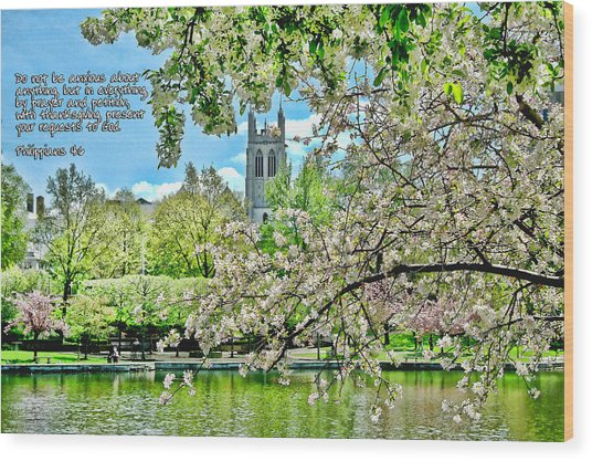 Inspirational - Cherry Blossoms Wood Print
