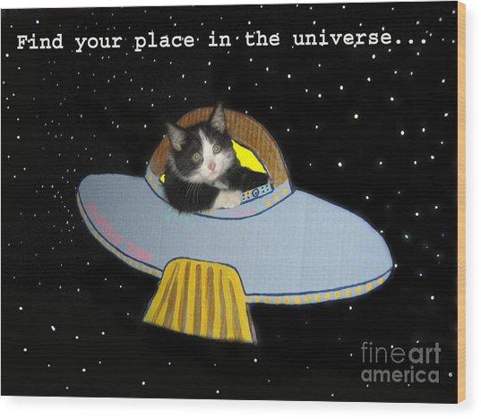 Inspirational Words From Teddy The Ninja Cat Wood Print