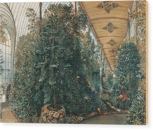 Interior View Of The Palm House Of Chateau Lednice Wood Print