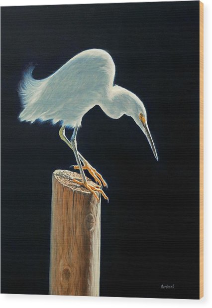 Interlude - Snowy Egret Wood Print