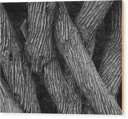 Intertwined Wood Print