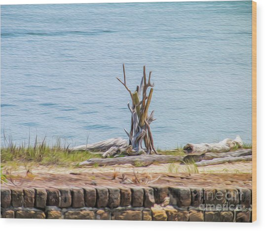 Intertwined Thoughts By The Ocean Wood Print