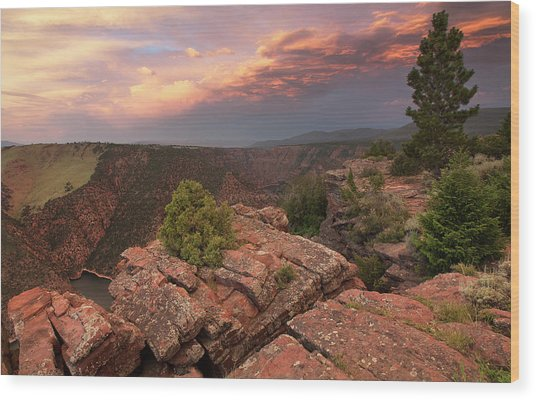 Into Red Canyon Wood Print by David Halter