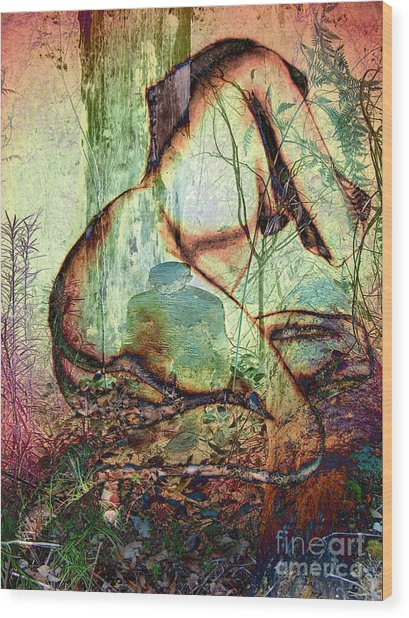 Into The Forest 10 Wood Print