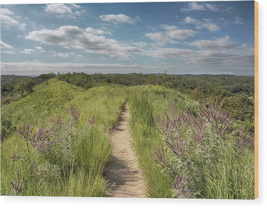 Into The Loess Hills Wood Print