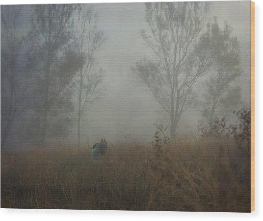 Into The Mist Wood Print