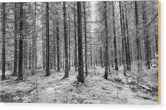 Into The Monochrome Woods Wood Print