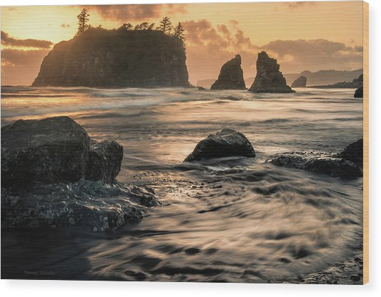 Into The Sea - Ruby Beach Wood Print by T-S Fine Art Landscape Photography