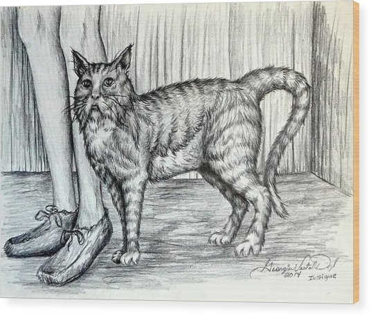 Intrigue  The Cat Wood Print