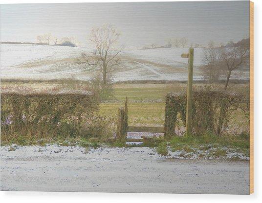 Invitation To A Winter Walk Wood Print by Aleck Rich Seddon