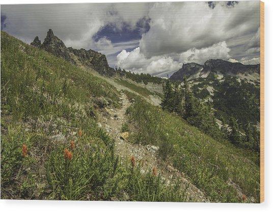 Inviting Trail Wood Print