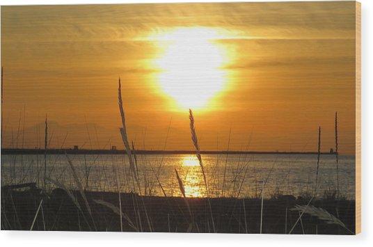 Iona Beach Park Wood Print
