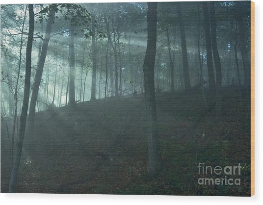 Iowa Fog Rays Wood Print