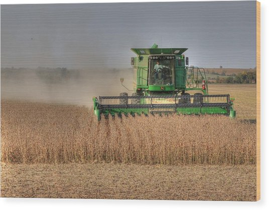 Iowa Soybean Harvest Wood Print