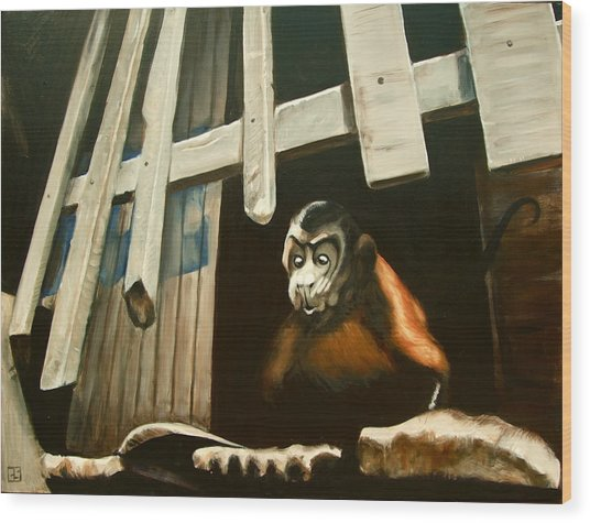 Iquitos Monkey Wood Print by Chris  Slaymaker